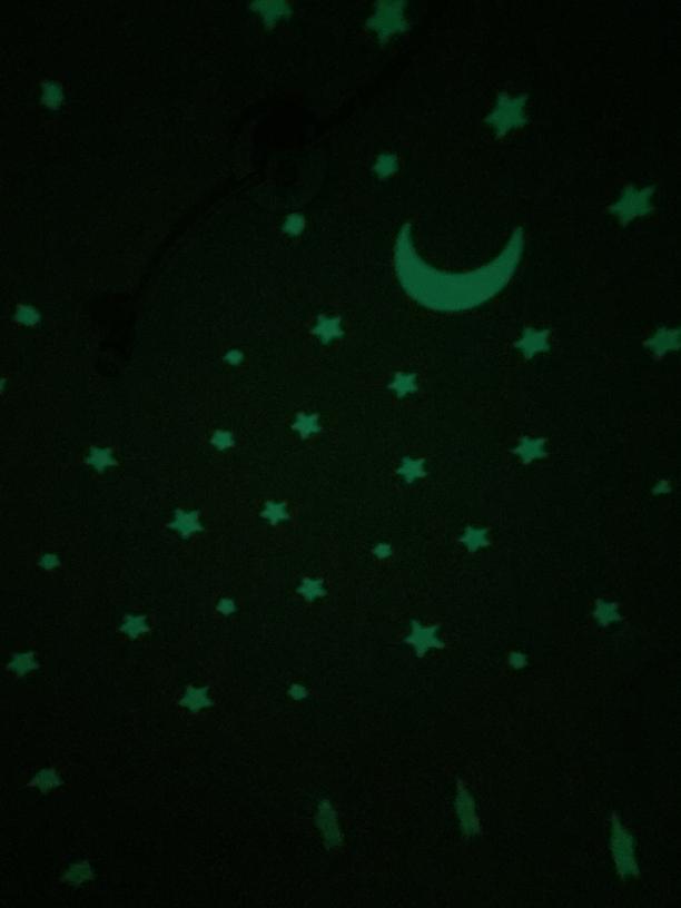 Ansmann Nachtlicht Einschlaflicht Schildkröte 1800-0003