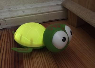 Nachtlicht Schildkröte Babyzoo